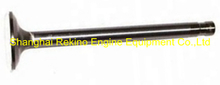 CCEC Cummins NT855 exhaust valve 145701 engine parts